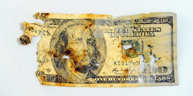 Problem With Money illustration 2, Animal Radio Newsroom